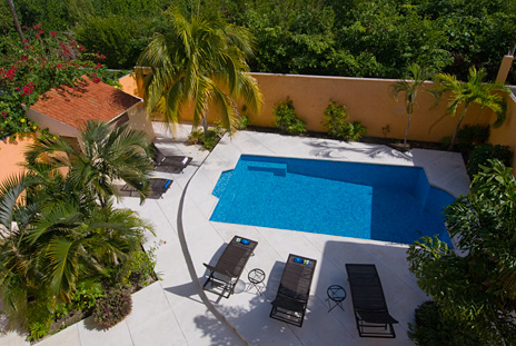 Pool at  Villa Paradiso Cozumel vacation rental