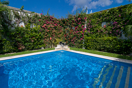 Pool view Quetzal Cozumel Mexico vacation rental home