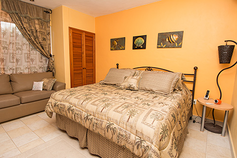 Bedroom has one king, jungle views, TV and private bath.